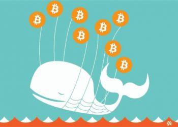 Bitcoin Whale Li Xiaolai